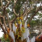 Champasak-Spa-Wellness-Center-Laos-Celebration